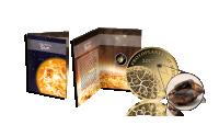 Informativ folder medföljer till mynt i 99,9 % guld med en bit av en meteorit (kondrit)