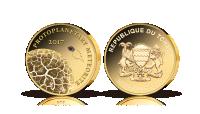 Mynt i 99,9 % guld med en bit av en meteorit (kondrit)