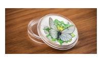 Silvermyntet med motiv av en fjäril i 3d i skyddskapsel